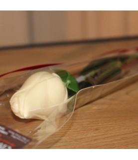 Rose chocolat blanc